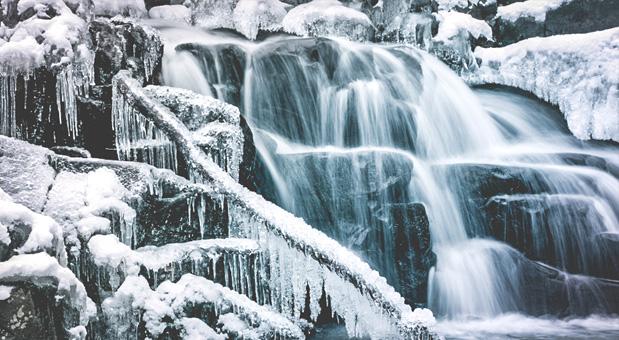 hamilton winter